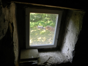 Black Walnut wood -- the start of our wood pile -- a view from the attic window.