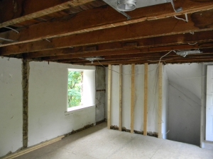 The Master Bedroom ceiling came down, and so did the nuts